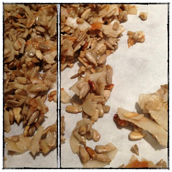 grain free granola (paleo)